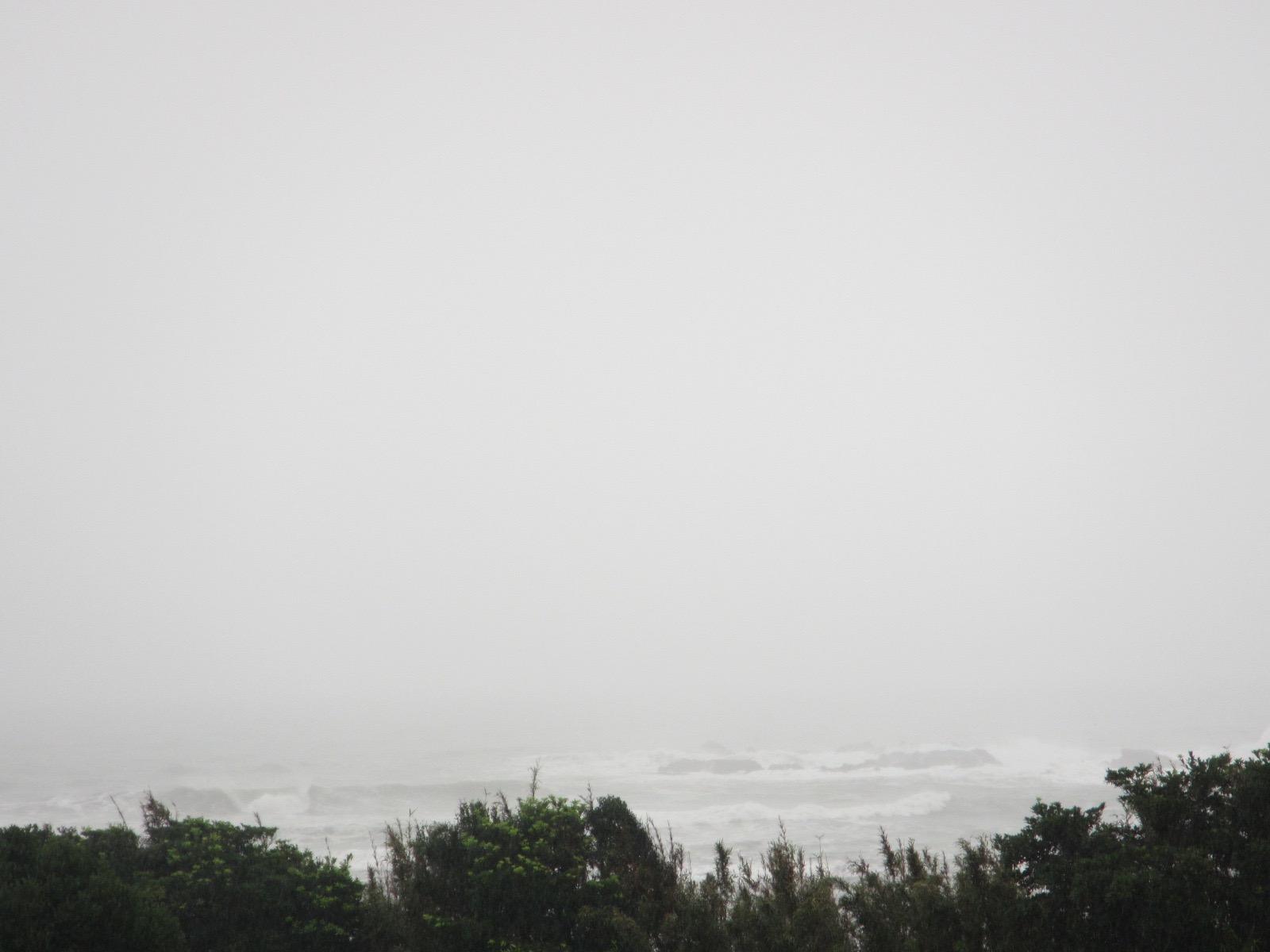 台風 - 1